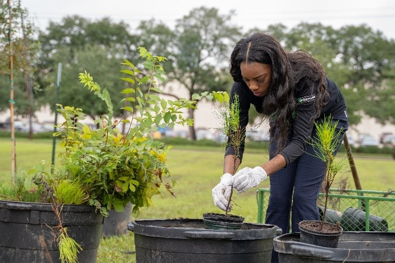 Neighborhood Roots Enterprise Expanding Tree Planting